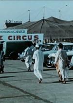 Cirkus jede