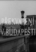 Překvapení v Budapešti